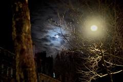 Moons (Max Sat) Tags: clouds fuji fujixpro1 kiwilmalrfxadapter legacylens leica light lumière lunettes maxsat maxwellsaturnin moon night nuages nuit saintgermaindesprés street summiluxr5014 xpro1