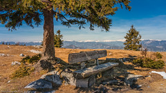 Schöckl 5 (Bikerwolferl) Tags: nature mountain landscape scenics outdoors tree sky mountainpeak bench beautyinnature nopeople woodmaterial natur berg landschaft landschaftspanorama imfreien baum berggipfel