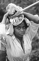 worker in the tea plantation,Sri Lanka 1999 (Francesco Lorenzetti street photography) Tags: worker tea plantation bnwphotography bnwphoto portrait bnwportrait analogicphotography sri lanka travelphotography travelling blackandwhitephotography blackandwhite woman portraitphotography