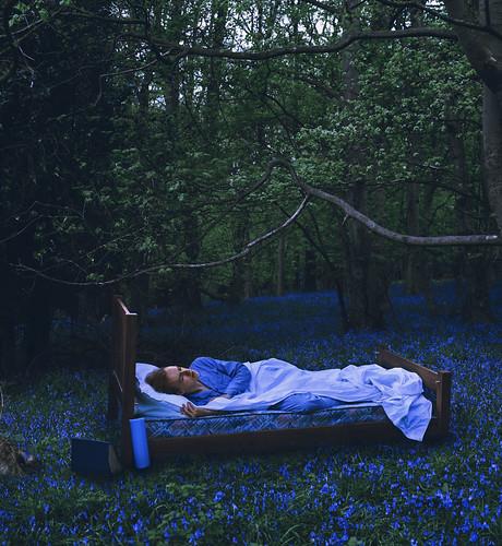 When We All Fall Asleep Where Do We Go image
