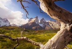 Cuernos del Paine (José Miguel Serna) Tags: chile paisaje sudamerica cuernosdelpaine nubes nature josémiguelserna torresdelpaine montañas atmosfera hiking atardecer patagonia trekking landscapes