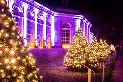 Christmas Lights (Max' Photos) Tags: christmasgarden pilnitz show architecture christmas lights light night germany saxony dresden