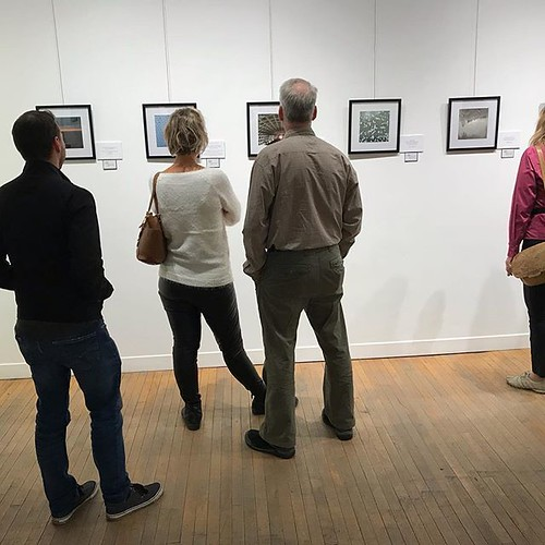 Today until 5pm is the LAST DAY to check out my photography display *#MondayMotivation - The Exhibit* in downtown #ldnont at @tapcreativityon! Thank you everyone who's attended for your love and support ❤️ All the prints are on sale for just $35!