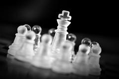 Jaque al rey (Osruha) Tags: ajedrez escacs chess checkmate jaquemate escacimat rey rei king peon peones peons pawns composición composició composition blancoynegro blancinegre blackandwhite bw bn bnw nikon nikonistas nikond750 d750 monocromo monocrom monochrome