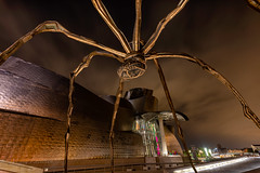 Bilbao (Mika Laitinen) Tags: basquecountry bilbao europe guggenheim spain architecture nightfall outdoors sky