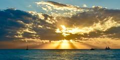 Golden sunset - Mallory Square (stevelamb007) Tags: sailboat mallorysquare beautiful clouds sunset keywest florida d7200 stevelamb