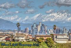 Birds Flying Over L.A. (Michael F. Nyiri) Tags: kennethhahnstaterecreationarea losangeles baldwinhills california skyline cityscape clouds cloudscape sangabrielmountains snowcapped city losangelesskyline