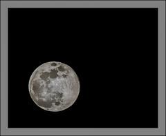 Super Moon (Timothy Valentine) Tags: snowmoon 0219 moon 2019 large 52weeks week82019 startingtuesdayfebruary192019 52weeksthe2019edition