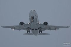 H18A9417 (Said Aminov) Tags: aviation aircraft avgeek airport vnukovo vko uuww moscow russia boeing b737 winter snow