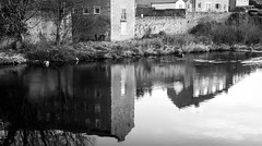 Barnard Castle . (wayman2011) Tags: colinhart fujifilmxe2s fujifilmxf35mmf2 lightroom5 wayman2011 bw mono rural rivers rivertees reflections oldmills pennines dales teesdale barnardcastle countydurham uk