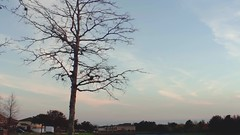 Beautiful sunset sky (Ricardo's Photography (Thanks to all the fans!!!)) Tags: video b roll anthem park florida nature sony saintcloudfl centralflorida cinematic videolibrary freevideos 1080pvideos 1080p freefootage footage sonyvideos