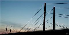 The bridge (Logris) Tags: brücke bridge düsseldorf dussedorf