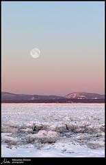 Coucher de la plein lune (Sébastien Dionne photographe) Tags: lune moon coucherdelalune moonset paysage landscape rivièreduloup canon canon5dmarkiv canon5dmkiv canon135f2 135mm canonef135mmf2lusm