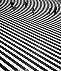 Striped Rhythm (Alexey Yakovchuk) Tags: geometry monochrome minimalism diagonal geometric minimalistic greyscale monotone perspective minimal lookup look up rhythm lines zebra blackandwhite abstract shopping center interior
