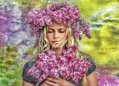 Lilac (maom_1 (Off, most of the time)) Tags: photoshop digital blending lady lilac painting portrait flowers textured