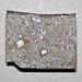 Ordinary chondrite (New Concord Meteorite) 2