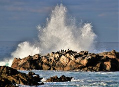 January4Image9926 (Michael T. Morales) Tags: pacificgrove waves rockformation ocean mar sea sky montereybay
