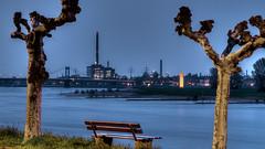 Blick auf ThyssenKrupp Kraftwerk und Rheinorange (lutzmarl) Tags: blaue stunde bäume rhein kraftwerk thyssenkrupp herman wenzel rheinorange bramme orange landschaft industrie bank nikon d7000 sigma 1770