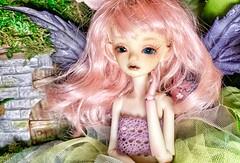 Breena Up Close (twilitize) Tags: wings beautiful photography fantasy fairyland fairy doll bjd art adventure adorable cutie popular pop resin dollart blue eyes
