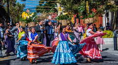 2018 - Mexico - Oaxaca - Wedding Party Parade - 3 of 3 (Ted's photos - Returns late Feb) Tags: 2018 cropped mexico nikon nikond750 nikonfx oaxaca tedmcgrath tedsphotos tedsphotosmexico vignetting dancers entertainers dresses baskets flowerbaskets colorful colourful streetscene street flowers calledemanuelgarcia oaxacacalledemanuelgarcia calledemanuelgarciaoaxaca oaxacaoaxaca wedding weddingparty parade weddingparade bollard shadow shadows suits people peopleandpaths pathsandpeople