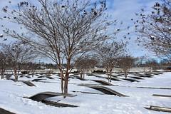 DSC_0007 (bsiu99) Tags: 911 dcsnow snowday pentagon pentagonmemorial