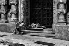 (charly84_jq) Tags: nikon nikond3200 nikonistas nikonista nikonargentina nikon3200 argentina arg blancoynegro bnw blackandwhite byn blackandwhitephoto bnwphoto bnwphotography fotoblancoynegro streetphotography streetphoto callejeando