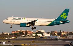 Aer Lingus (Guilherme_Martinez) Tags: aircraft airbus airforce adorable sky summer sun sunset planespotting passion portugal follow family followme lisboa love lisbon lovers like