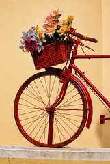 'One Half' (Canadapt) Tags: bicycle basket flowers display red sintra portugal canadapt