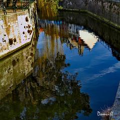Reflets dans le canal de Bergues (DOMVILL) Tags: bergues norddefranceeau canal domvill maisons reflets wwwflickrcompeoplevildom