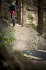Phoenix Enduro at Christchurch Adventure Park (LazenbyVisuals) Tags: mountain biking bike cycling christchurch adventure park enduro racing new zealand outdoors outdoor life lazenby visuals