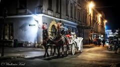 Night coach (kud4ipad) Tags: 2017 krakow poland architecture coach horse lamp