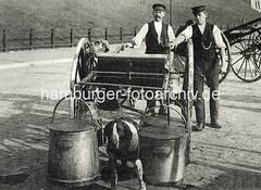 bildarchiv-hamburg-com_Aa8AqhSehk (stadt + land) Tags: hunde hund bilder fotos arbeitshund historisch früher aufgabe transport alte fotografien