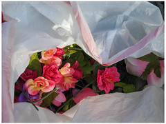 Imaginary Bouquet (prima seadiva) Tags: abandoned capitolhill flowers plastic stuff winter artificialflowers