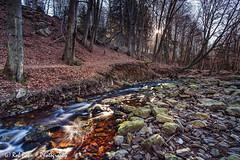 20190224-0112-La_Hoëgne-bw (Rob_Boon) Tags: 3sgnd ardennen belgië lahoëgne landscape lndpol nisi on1 rivier vallei valley stream river forest woods rural robboon belgium wallonie ardennes sun backlight sunrise longexposure