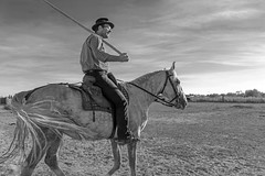 Gardian (Xtian du Gard) Tags: xtiandugard france provence camargue pontdegau saintesmariesdelamer gardian manadier nb portrait personnes cavalier cheval