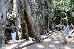 Angkor_Ta Prohm_2014_32