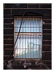2018-09-09 | reflection (clemisan) Tags: darmstadt urban window windowwednesday reflections fence x100s bridge