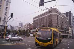 Taranaki Street - Wellington (andrewsurgenor) Tags: bus trolleybuses transit trackless trolleybus omnibus obus nzbus gowellington wellington newzealand