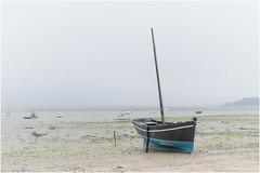 travel memories  ... a foggy morning ... (miriam ulivi) Tags: miriamulivi nikond7200 france bretagna cancale spiaggia beach bassamarea lowtide barca boat nebbia fog nature