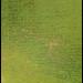 180704-0158-MAVICP-HDR.JPG