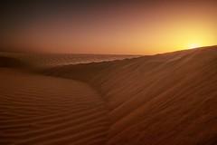 Mysterious dunes - Wahibi (Oman) (andrea.g) Tags: desert sand sunrise oman