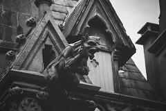 Gargoyle, Notre Dame de la Treille - Lille, France (pas le matin) Tags: nb bw noiretblanc blackandwhite monochrome gargouille gargoyle cathedral cathédrale church église architecture lille france europe europa canon 7d canon7d canoneos7d eos7d notredamedelatreille vieuxlille