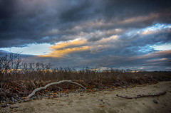 Sunset Sky (Bud in Wells, Maine) Tags: kennebunk maine parsonsbeach clouds driftwood sky sunset niksoftware hdrefexpro2