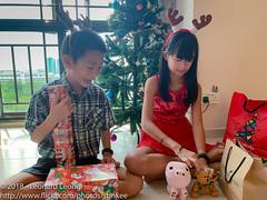 Old friends return (Stinkee Beek) Tags: christmas erin ethan