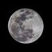Moon - Feb. 19 2019