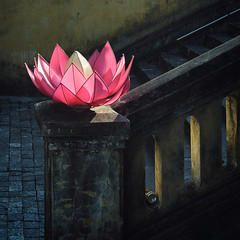 Lotus Light (mrmeezoid) Tags: fake lotus lighting dark contrast flower stairs shapes can railing stonework architecture cobbles vietnam travel asia hanoi uncool uncool2 cool uncool3 uncool4 uncool5 uncool6 cool2 uncool7 cool3