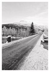 (2018) (phamnes) Tags: coolscanved norway winter blackandwhitephoto ishootfilm filmcamera 135film 35mm apx100 agfaphoto blackandwhitefilm filmphotography filmphoto slr sigmalens sigma20mm sigma nikonf301 nikon