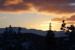 Sunset in the Highlands (steve_whitmarsh) Tags: aberdeenshire scotland scottishhighlands highlands craigendarroch winter snow mountain hills sun sunset cairngorms topic abigfave