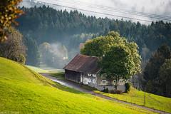 House on the hill (Andrey Baydak) Tags: house hill village green foggy fog countryside travel roadtrip lindenbergimallgäu bavaria bayern dorf haus allgäu swabia schwaben 28300