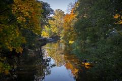 Autumn leaves (Anders Löfgren) Tags: alingsås sweden säveån å stream colors boat autumn fall